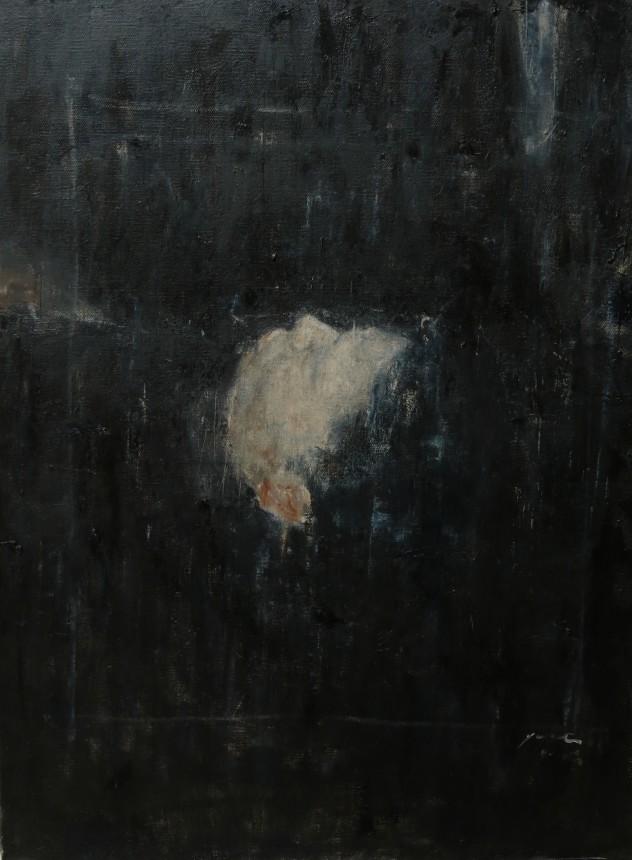 头颅上的白色物3-60x80cm-布面油画-2014