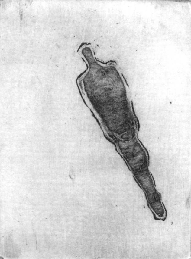 食人集铜版 (1)