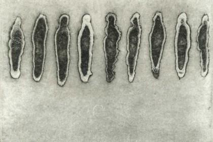 食人集铜版 (38)