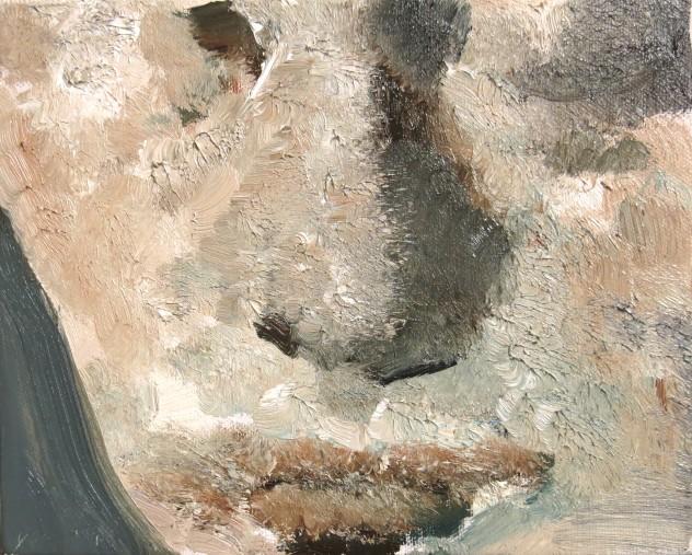 呼吸者肖像10 25×20cm 布面油画 2016年